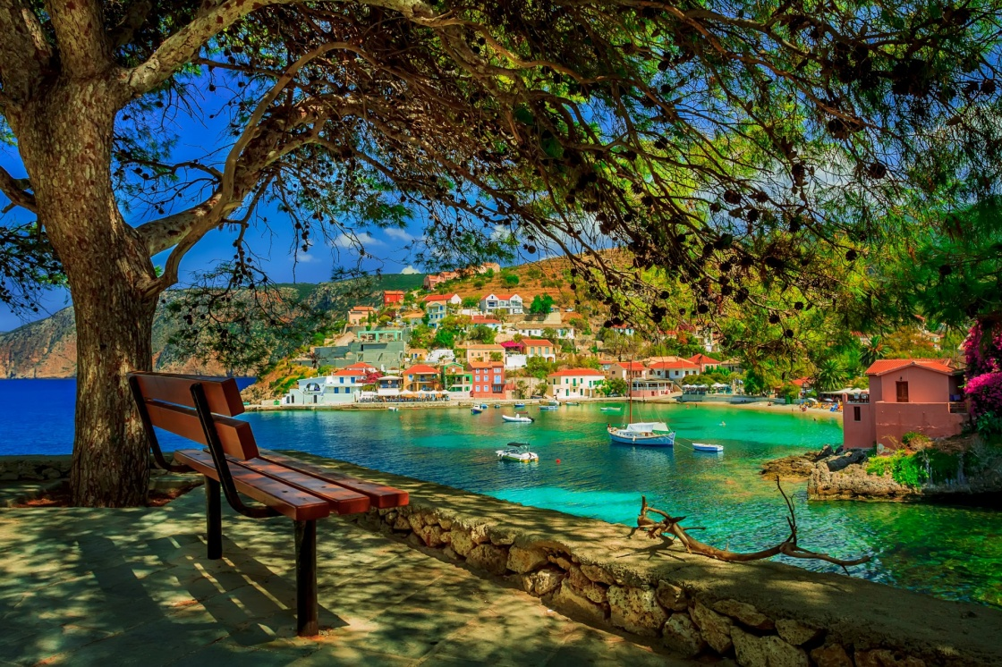 'Bench under a tree on a sunny day at Assos beach, Kefalonia, Greece' - Kefalonia